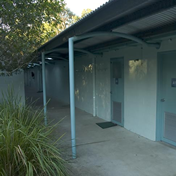 Acacia accommodation
